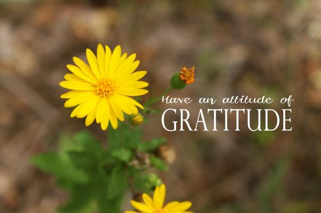 gratitde